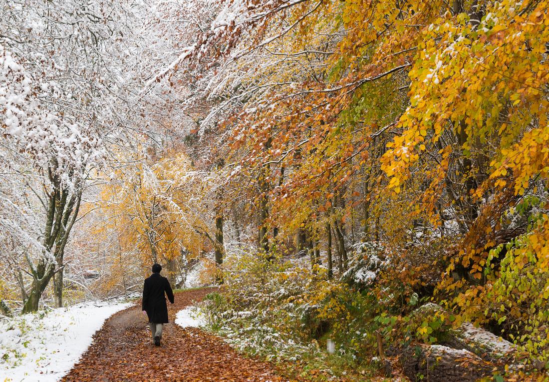 Herbst oder Winter? Früher Schnee im Schaichtal, Naturpark Schönbuch