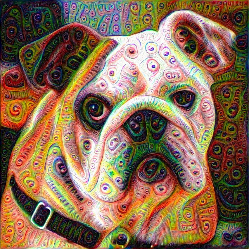 Bulldog Google Deep Dream picture