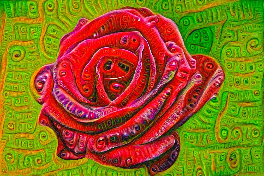Red Rose Google Deep Dream Art