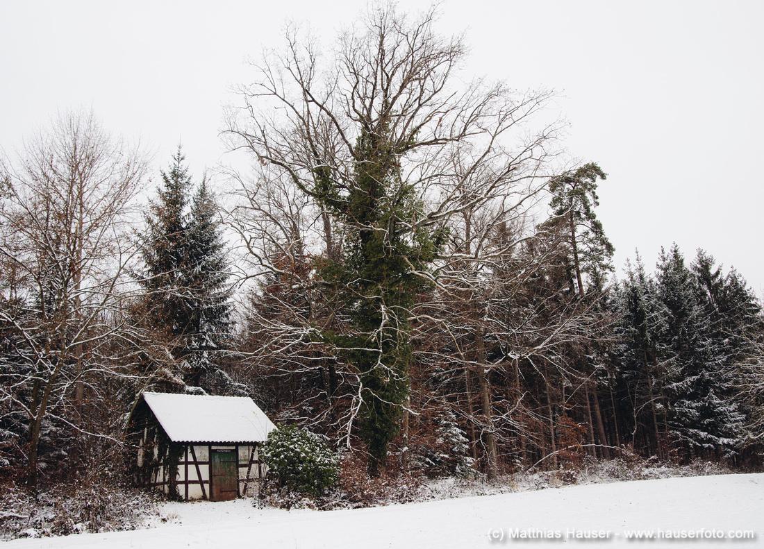 Backofenhütte im Naturpark Schönbuch zwischen Waldenbuch und Dettenhausen, Baden-Württemberg, Deutschland
