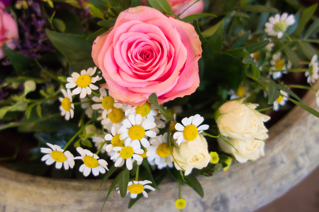 Schale mit Blumen, Gänseblümchen und rosa Rose