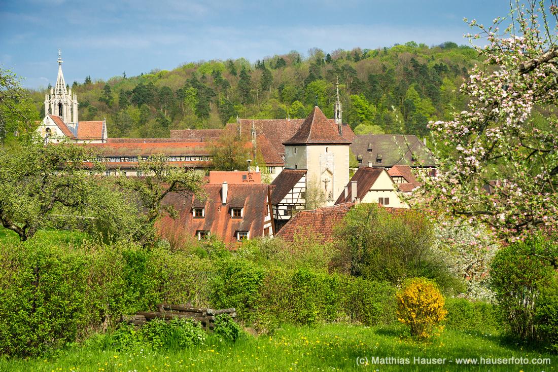 Bebenhausen Naturpark Schönbuch Baden-Württemberg Deutschland