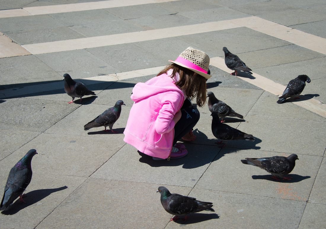 Pink dressed girl and doves at Piazza San Marco Venice