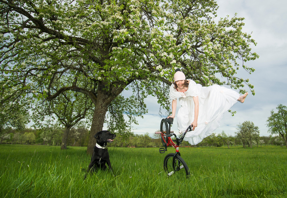 BMX Flatland bride jumps in her wedding dress, a dog is watching very interested. Flowering apple tree and green spring meadow.