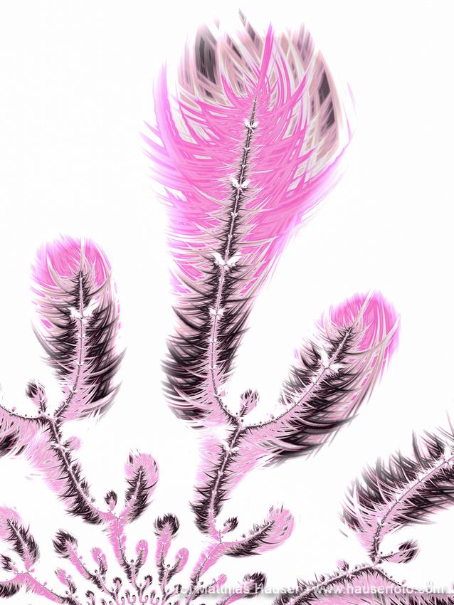 Fractal flower like shapes light pink pastel tones