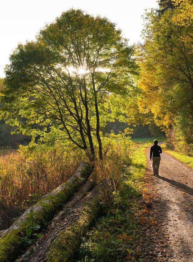 Herbstlicher Spaziergang im Schaichtal, Naturpark Schönbuch