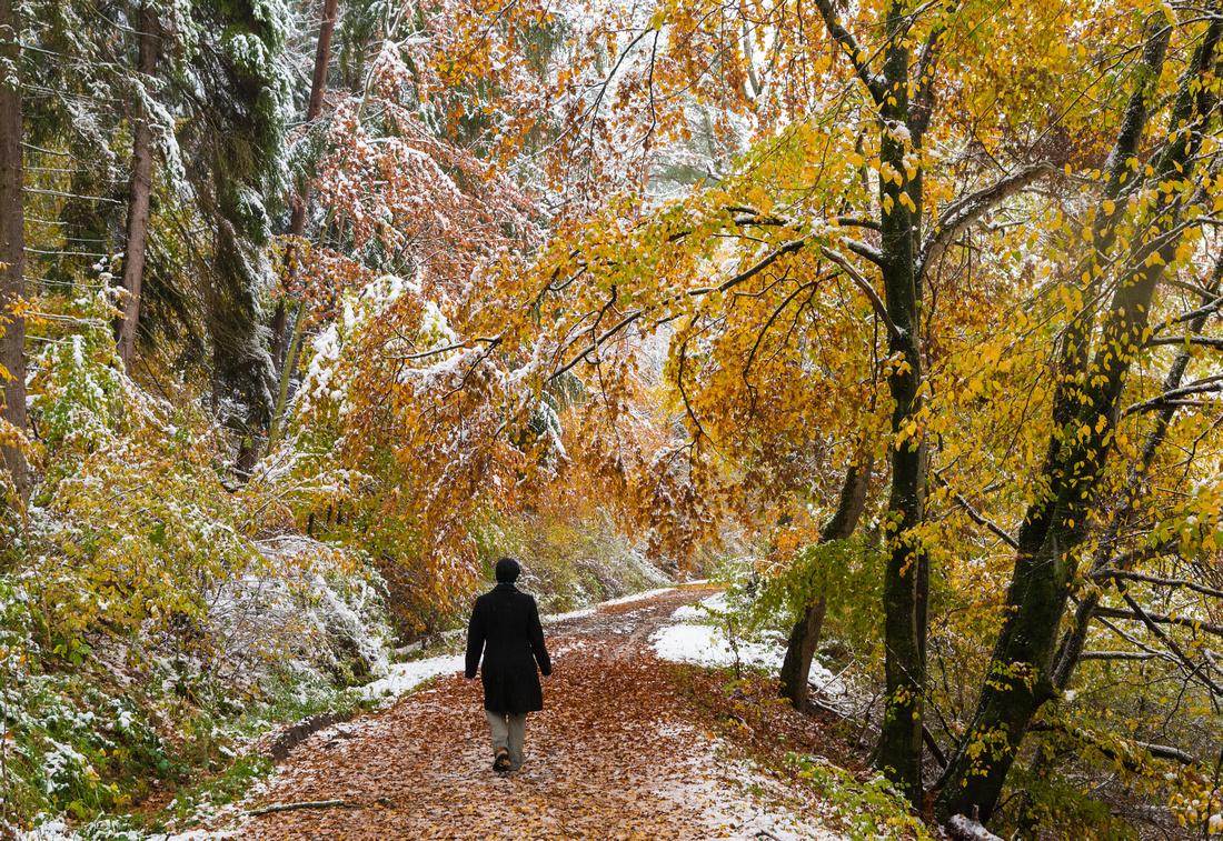 Spaziergang im Oktober, noch Herbst aber schon der erste Schnee, Schaichtal, Naturpark Schönbuch, Baden-Württemberg, Deutschland