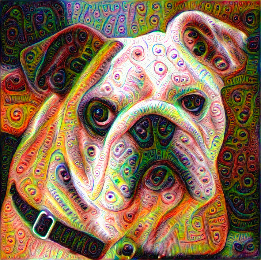 Bulldog Google Deep Dream picture