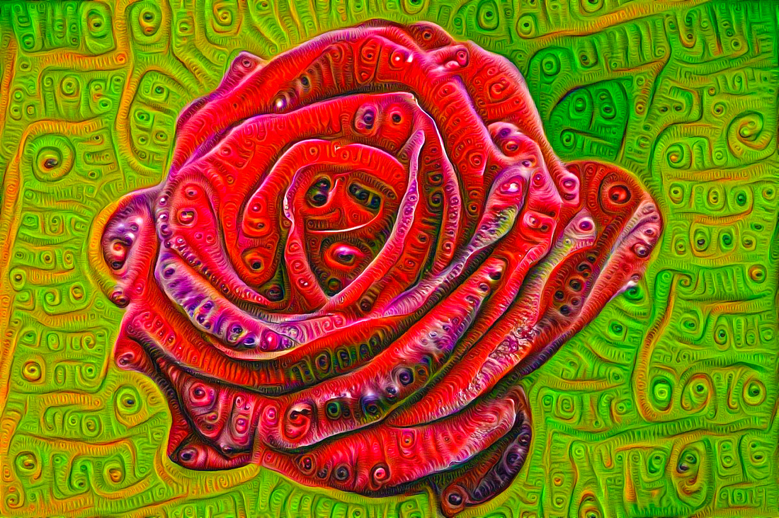 Red Rose Google Deep Dream Art