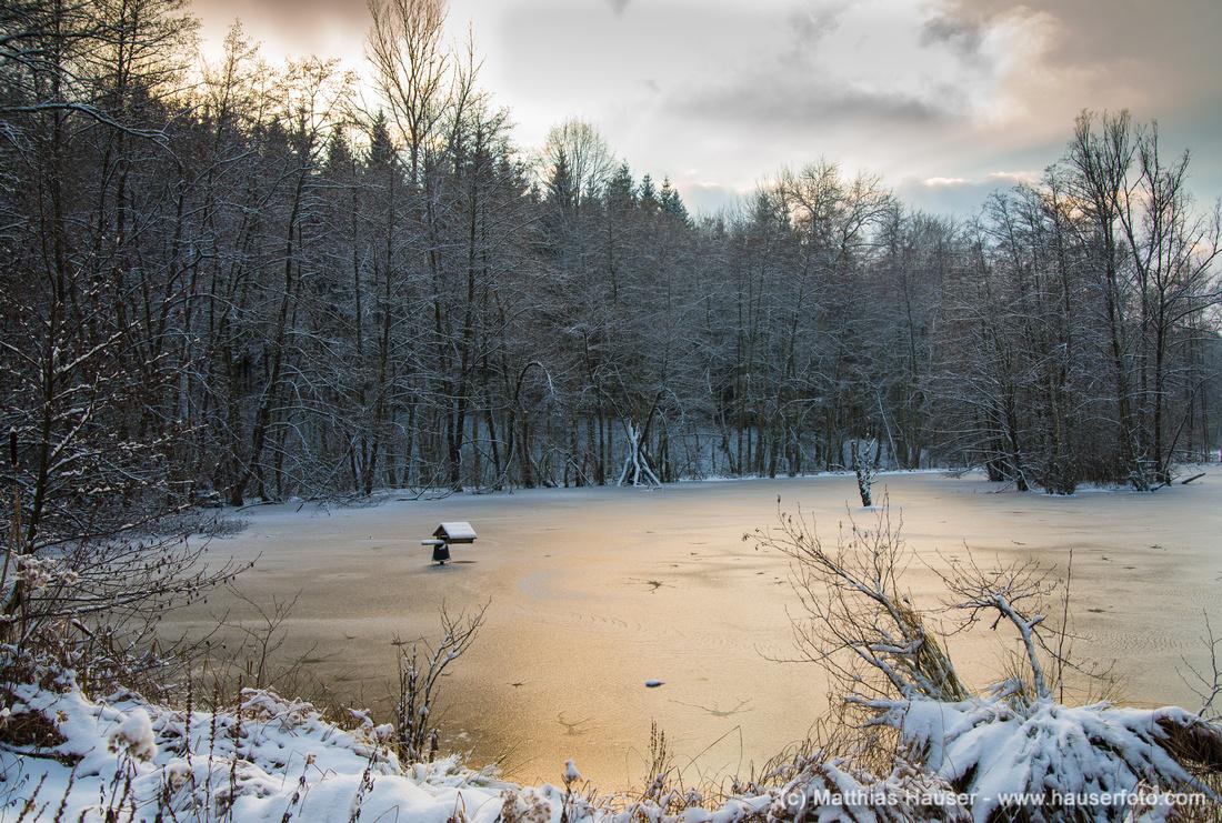 Mit Eis bedeckter Schlüsselsee im warmen Abendlicht, Schaichtal, Naturpark Schönbuch, Baden-Württemberg, Deutschland, Europa