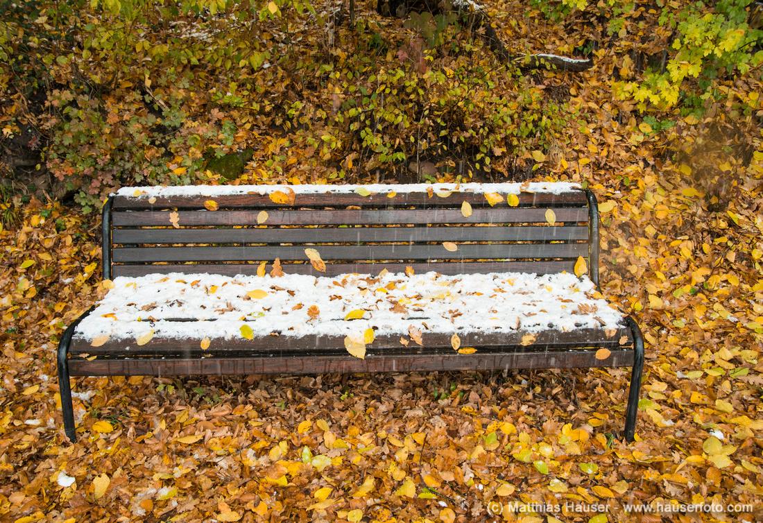 Mit Schnee bedeckte Bank im Herbst, auf dem Boden liegt gelbes und goldenes Herbstlaub
