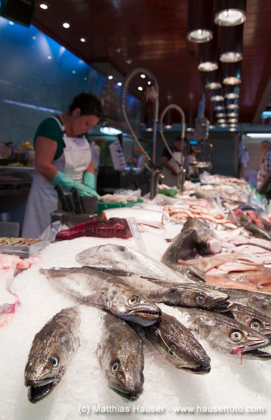 Marktstand mit frischem Fisch im Mercat de la Concepcio, Barcelona, Spanien