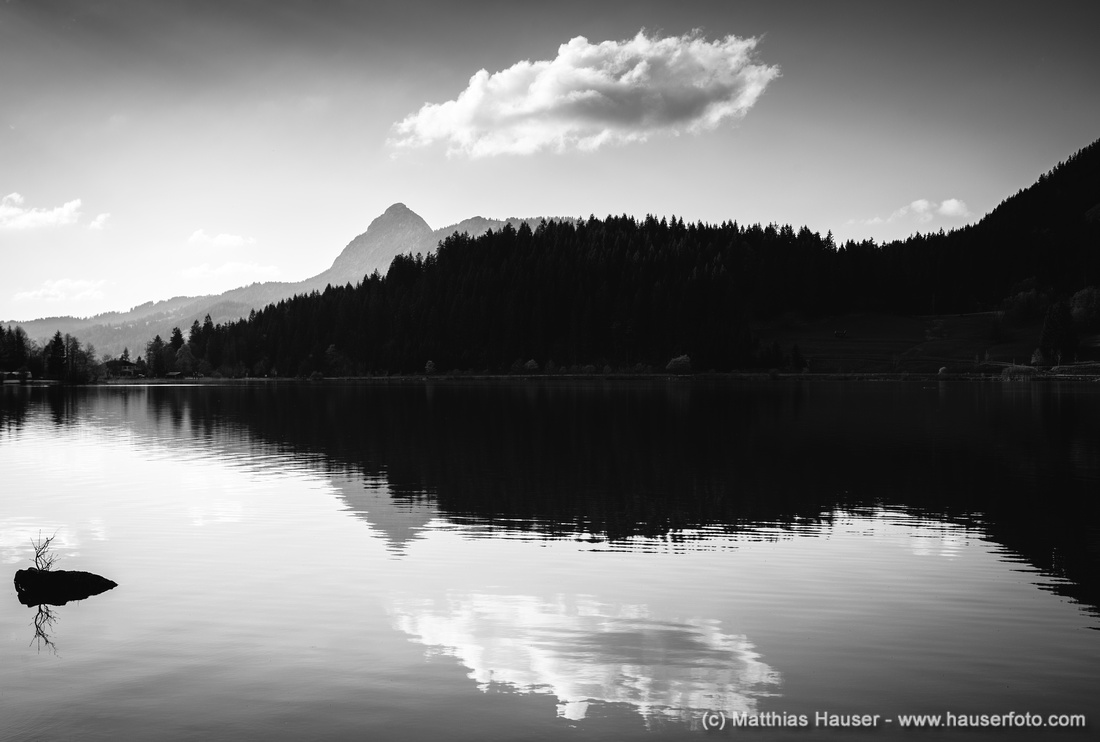 Water reflection black and white serene and tranquil fine art photography