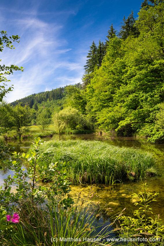 See bei der Teufelsbrücke im Naturpark Schönbuch Deutschland